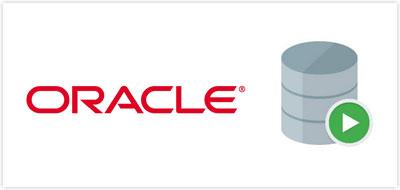 Nukleos Applicaciones Moviles Inteligentes Oracle Databases